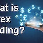 Знайте точную правду о Forex в интернет-коучинге